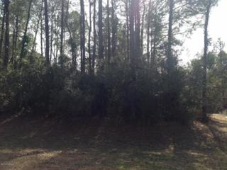 1202 Hellene Drive, Wilmington, NC 28411 (MLS #100036900) :: Century 21 Sweyer & Associates