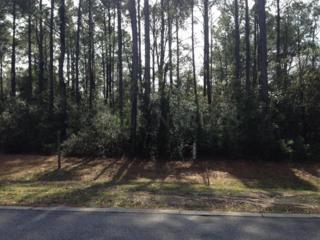 1206 Hellene Drive, Wilmington, NC 28411 (MLS #100036903) :: Century 21 Sweyer & Associates