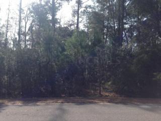 1214 Hellene Drive, Wilmington, NC 28411 (MLS #100036906) :: Century 21 Sweyer & Associates