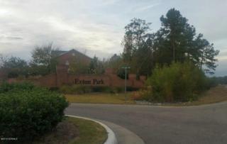 5158 Exton Park Loop, Castle Hayne, NC 28429 (MLS #100036986) :: Century 21 Sweyer & Associates