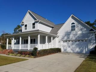 163 Bull Bay Drive, Harrells, NC 28444 (MLS #100037669) :: Century 21 Sweyer & Associates