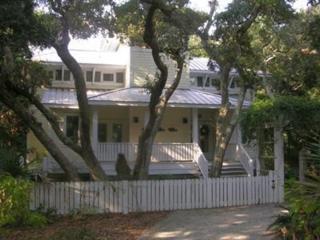 206 Stede Bonnet Wynd, Bald Head Island, NC 28461 (MLS #100038615) :: Century 21 Sweyer & Associates