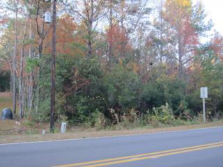 203 White Oak Bluff Road, Stella, NC 28582 (MLS #100038624) :: Century 21 Sweyer & Associates