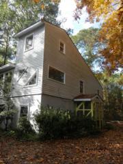 268 Salty Shores Road, Newport, NC 28570 (MLS #100039039) :: Century 21 Sweyer & Associates