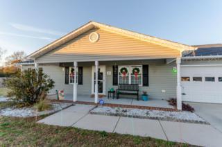 306 High Stepper Court, Jacksonville, NC 28540 (MLS #100039220) :: Century 21 Sweyer & Associates