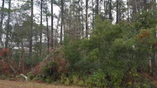 823 Wood Creek Drive, Hubert, NC 28539 (MLS #100039570) :: Century 21 Sweyer & Associates