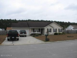 119 Eagle Trail, New Bern, NC 28562 (MLS #100039654) :: Century 21 Sweyer & Associates