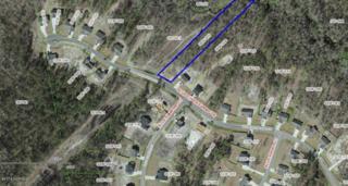 266 Blue Creek Farms Drive, Jacksonville, NC 28540 (MLS #100040414) :: Century 21 Sweyer & Associates