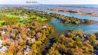 1429 Avenel Drive, Wilmington, NC 28411 (MLS #100040715) :: Century 21 Sweyer & Associates