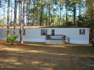 210 Sandy Run Drive, Cape Carteret, NC 28584 (MLS #100041376) :: Century 21 Sweyer & Associates