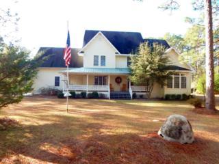 199 Trailwood Drive, Newport, NC 28570 (MLS #100041380) :: Century 21 Sweyer & Associates