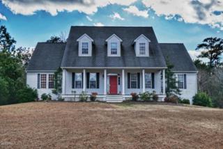 9801 Clarendon Drive, Emerald Isle, NC 28594 (MLS #100041547) :: Century 21 Sweyer & Associates
