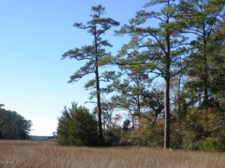 139 Cummins Creek Road, Beaufort, NC 28516 (MLS #100041766) :: Century 21 Sweyer & Associates