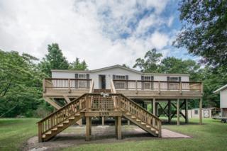 1355 S Holly Shelter Estate Road, Burgaw, NC 28425 (MLS #100041777) :: Century 21 Sweyer & Associates