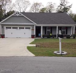 232 Long Neck Drive, Richlands, NC 28574 (MLS #100042084) :: Century 21 Sweyer & Associates