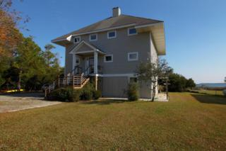 219 Straits Drive, Beaufort, NC 28516 (MLS #100042250) :: Century 21 Sweyer & Associates