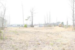 1088 Haw Branch Road, Beulaville, NC 28518 (MLS #100043152) :: Century 21 Sweyer & Associates