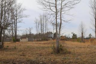 227 Mewborn Drive, Beulaville, NC 28518 (MLS #100043154) :: Century 21 Sweyer & Associates