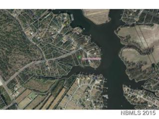 398 Smith Creek Road, Oriental, NC 28571 (MLS #100043201) :: Century 21 Sweyer & Associates
