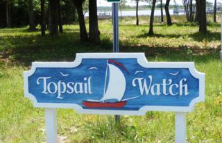 235 Topsail Watch Drive, Hampstead, NC 28443 (MLS #100043244) :: Century 21 Sweyer & Associates
