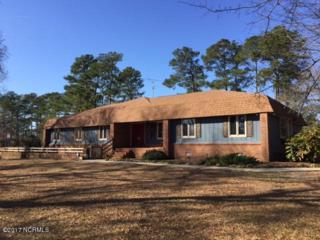 162 N Country Club Drive, Kenansville, NC 28349 (MLS #100043605) :: Century 21 Sweyer & Associates