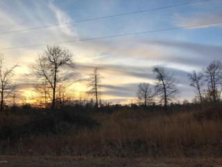 230 Mewborn Drive, Beulaville, NC 28518 (MLS #100044130) :: Century 21 Sweyer & Associates