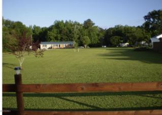 141 Sunset Avenue, Whiteville, NC 28472 (MLS #100044478) :: Century 21 Sweyer & Associates