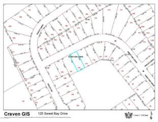 125 Sweet Bay Drive, New Bern, NC 28560 (MLS #100044571) :: Century 21 Sweyer & Associates