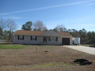 307 Kyle Drive, Havelock, NC 28532 (MLS #100044574) :: Century 21 Sweyer & Associates
