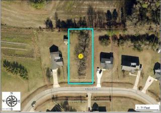 7035 Kingswood Circle, Stantonsburg, NC 27883 (MLS #100045069) :: Century 21 Sweyer & Associates