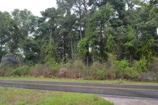 209 Shannon Drive, Wilmington, NC 28409 (MLS #100045336) :: Century 21 Sweyer & Associates