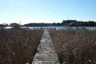 251 Waterway Drive, Sneads Ferry, NC 28460 (MLS #100045387) :: Century 21 Sweyer & Associates