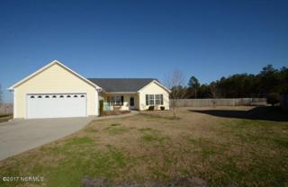 223 Cherry Blossom Drive, Richlands, NC 28574 (MLS #100045551) :: Century 21 Sweyer & Associates