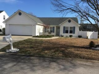 802 Sand Hills Drive, Newport, NC 28570 (MLS #100046059) :: Century 21 Sweyer & Associates