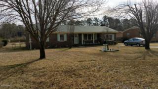 301 Springdale Drive, Wilmington, NC 28405 (MLS #100046482) :: Century 21 Sweyer & Associates