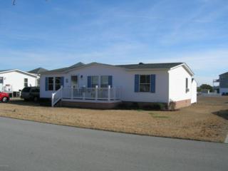 301 Blue Goose Lane, Newport, NC 28570 (MLS #100046521) :: Century 21 Sweyer & Associates