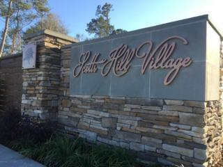 1001 Pandion Drive, Wilmington, NC 28411 (MLS #100046583) :: Century 21 Sweyer & Associates