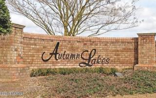 52 Autumn Breeze Court, Grimesland, NC 27837 (MLS #100047714) :: Century 21 Sweyer & Associates
