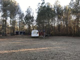 340 Whitestocking Ext, Burgaw, NC 28425 (MLS #100047885) :: Century 21 Sweyer & Associates