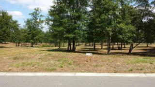 430 S Wild Rice Drive SW, Supply, NC 28462 (MLS #100048051) :: Century 21 Sweyer & Associates