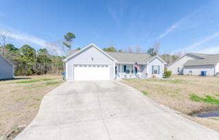 108 Farmgate Drive, Richlands, NC 28574 (MLS #100048160) :: Century 21 Sweyer & Associates