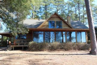 100 Shady Banks Beach Road, Washington, NC 27889 (MLS #100048278) :: Century 21 Sweyer & Associates