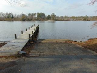 300 Freshwater Drive, Blounts Creek, NC 27814 (MLS #100048403) :: Century 21 Sweyer & Associates