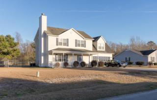 230 Redberry Drive, Richlands, NC 28574 (MLS #100048487) :: Century 21 Sweyer & Associates