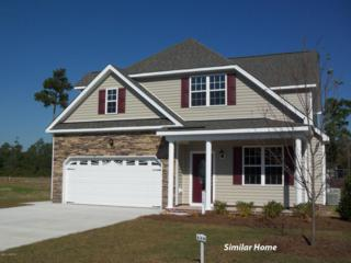 309 Chadwick Shores Drive, Sneads Ferry, NC 28460 (MLS #100049196) :: Century 21 Sweyer & Associates