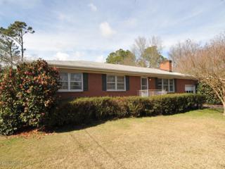 224 Jeb Stuart Drive, Wilmington, NC 28412 (MLS #100049285) :: Century 21 Sweyer & Associates