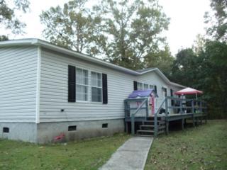 145 Quail Point Drive, Hubert, NC 28539 (MLS #100049419) :: Century 21 Sweyer & Associates