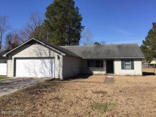 116 Quartz Drive, Jacksonville, NC 28540 (MLS #100049509) :: Century 21 Sweyer & Associates