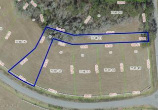 116 Backfield Place, Jacksonville, NC 28540 (MLS #100049871) :: Century 21 Sweyer & Associates