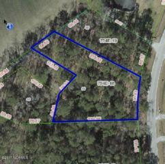 246 Sewell Road, Jacksonville, NC 28540 (MLS #100049884) :: Century 21 Sweyer & Associates